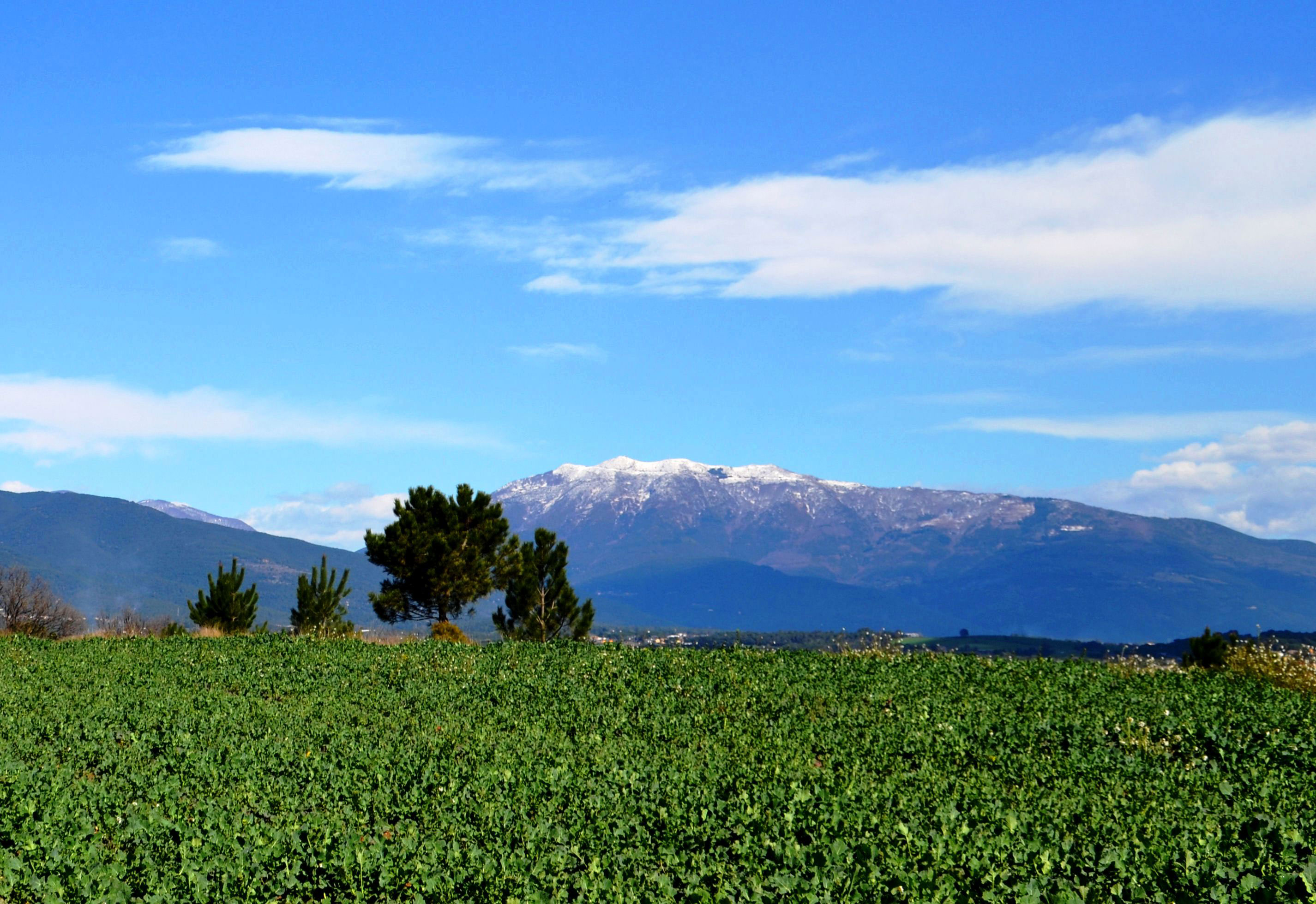 Montseny_from_Cardedeu